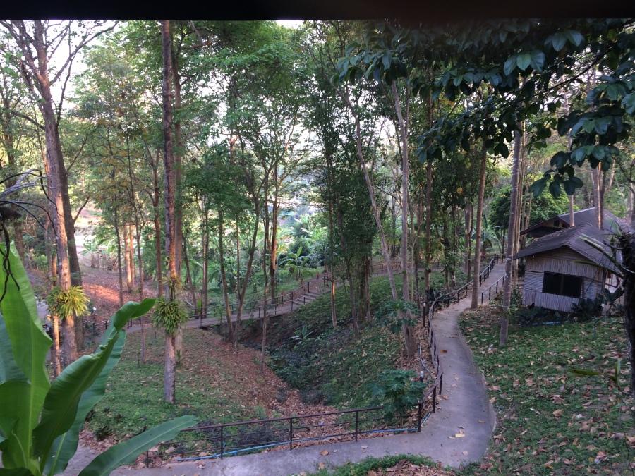 The grounds of our meditation retreat outside Kanchanaburi, Thailand.